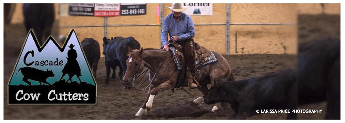 Cutting Horse Stallion Auction - Cascade Cow Cutters
